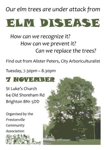 Elm Disease talk poster